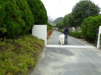 2011_11_06_01.jpg