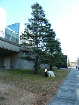 2012_01_10_03.jpg