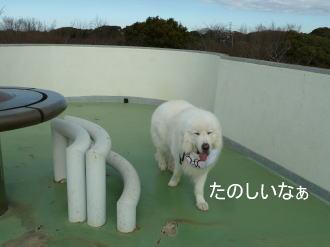 2012_01_11_04.jpg