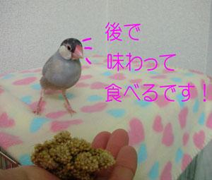 京の場合!