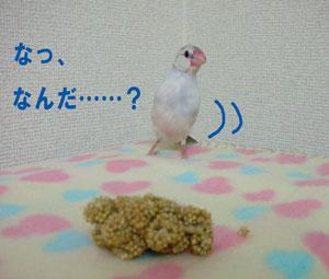 鈴の場合^_^;