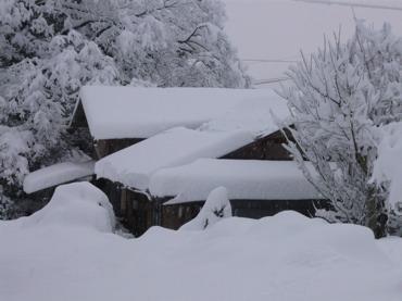 雪下の家260110