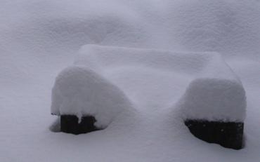雪カバの鼻260110