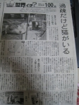 台湾猫村の記事