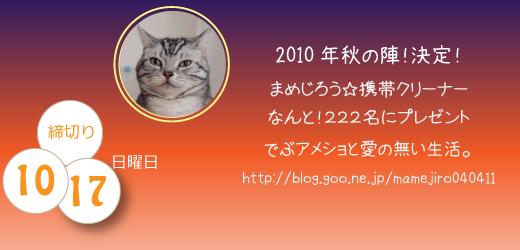 keitai2010.jpg