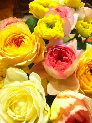 blog69_convert_20110719124613.jpg