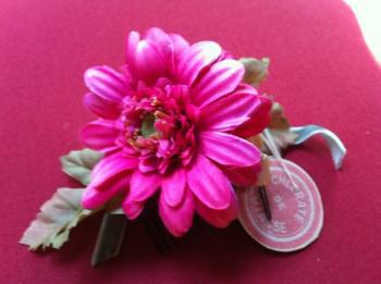 blog96_convert_20110725103856.jpg