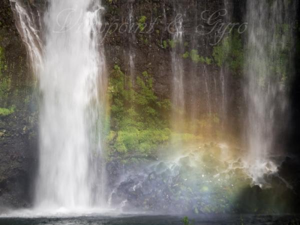 白糸の滝 C