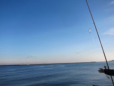 八戸港 さば釣り