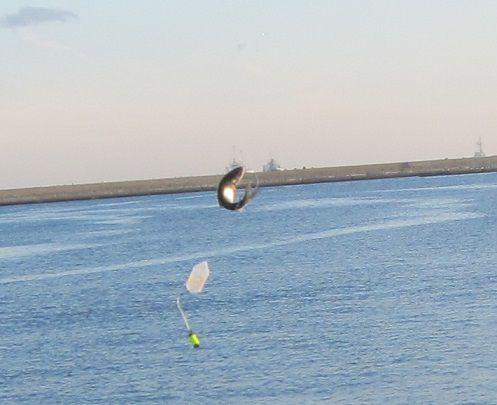 八戸館鼻漁港 さば釣り