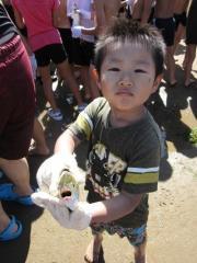 中村町小学校イベント。地引網
