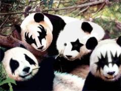 kiss-pandas.jpg