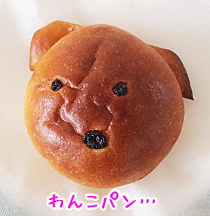 わんこパン