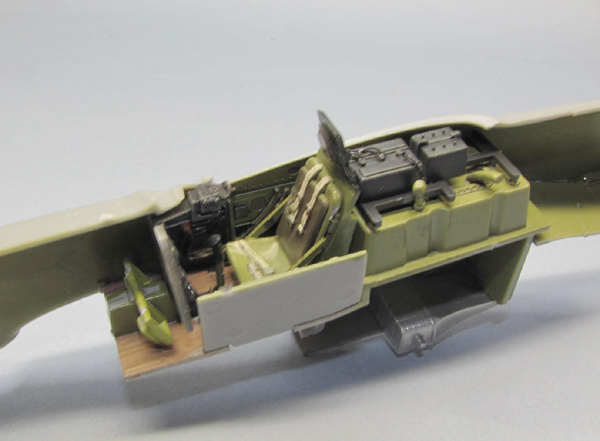P51 (3)