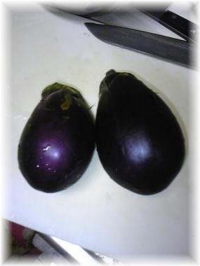 2010-09-17.JAの茄子