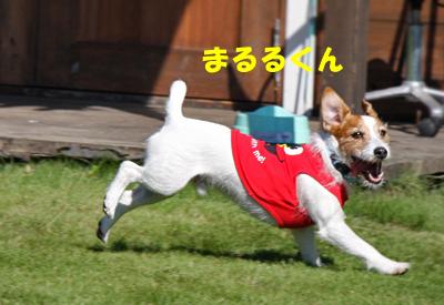 IMG_8400.jpg