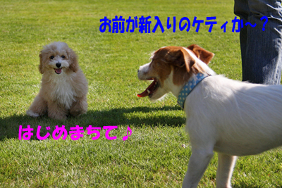 IMG_8439.jpg
