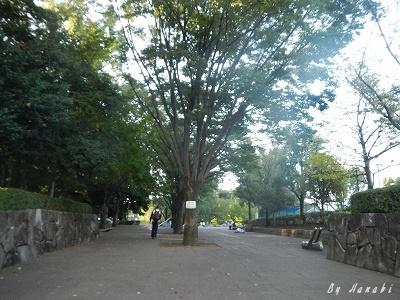 DSCN0555.jpg