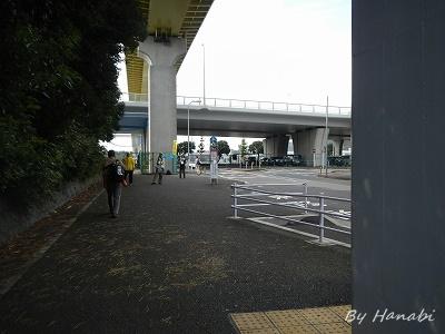 DSCN0931.jpg