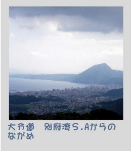 2010-10-067.jpg
