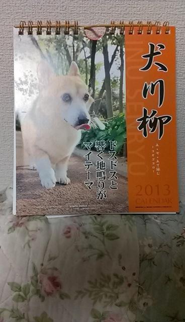 IMAG0002_COVER_20121019212110.jpg