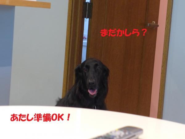 001_convert_20140926084508.jpg