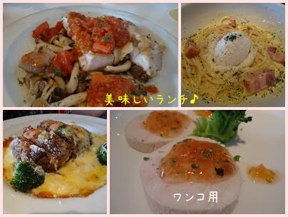 20120708-10.jpg