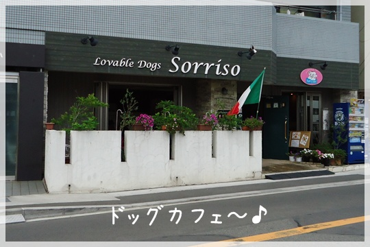 20120708-7.jpg