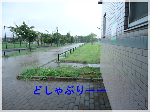 20120804-2.jpg
