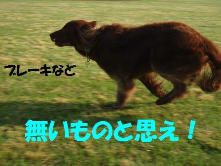 brake10JUN10 103