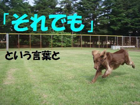 BBB02JULY10 base run 022