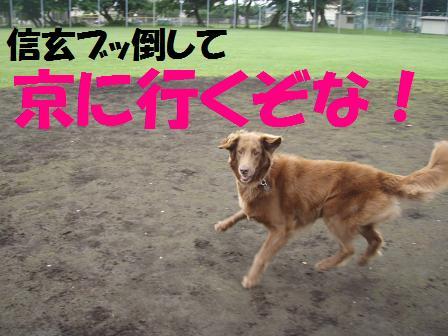 13JULY10 006kyou
