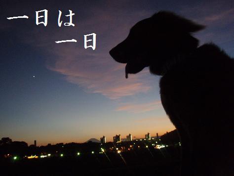 05AUG10 328ichinichi