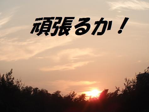 21SEP10 041aaa