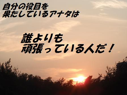 C21SEP10 041role