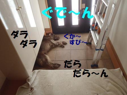 20101019131714b32a.jpg
