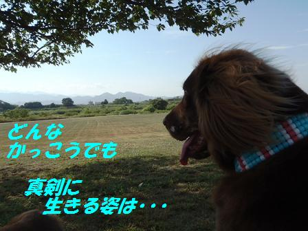 B03SEP10 017chiaki