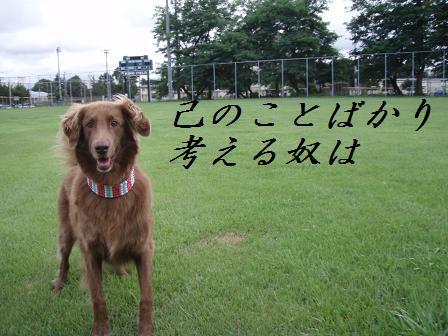 B10AUG10 0337sumurais
