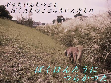 C14OCT06 091aaomori