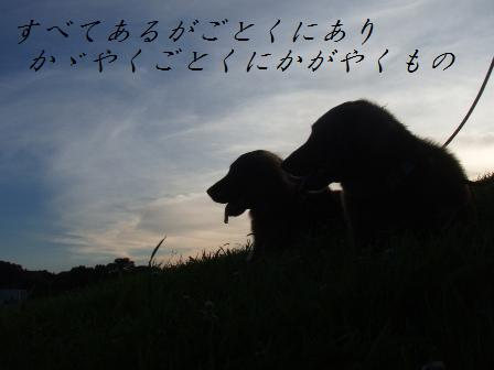 B18JULY102 019aomoria
