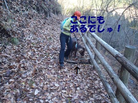 04DEC10 057hole3
