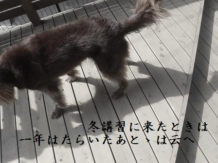 AA203OCT11 060kenji