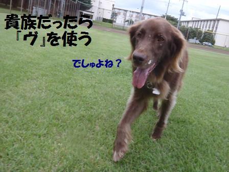 01SEP11 039kizoku