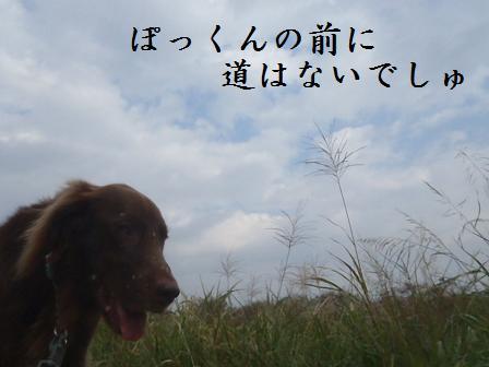 A09OCT11 177takamura
