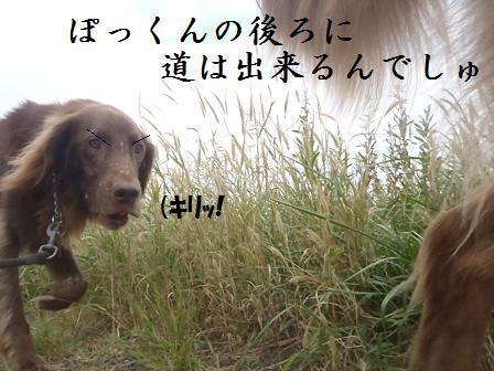B09OCT11 163takamura