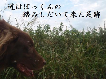 C09OCT11 149takamura