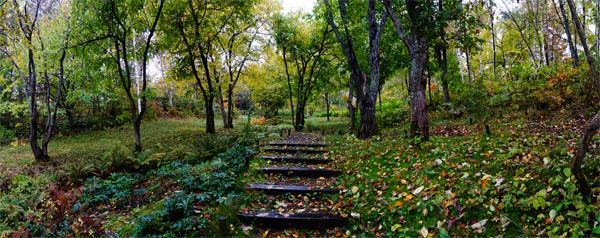 秋の滝野パノラマ1_edited-2