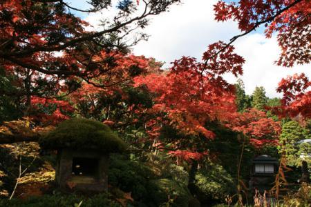 逍遥園の秋