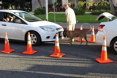 警察犬働く