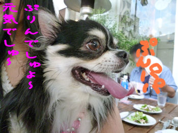 komusan_0830_1
